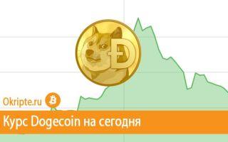 Курс Dogecoin к рублю, доллару, евро и биткоину
