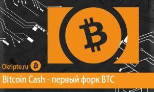 Криптовалюта Bitcoin Cash — как появилась и что из себя представляет
