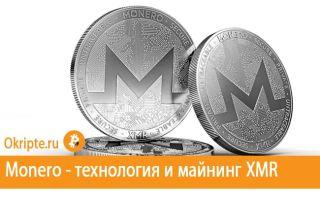 Криптовалюта Monero: технология, майнинг, где купить и как сохранить